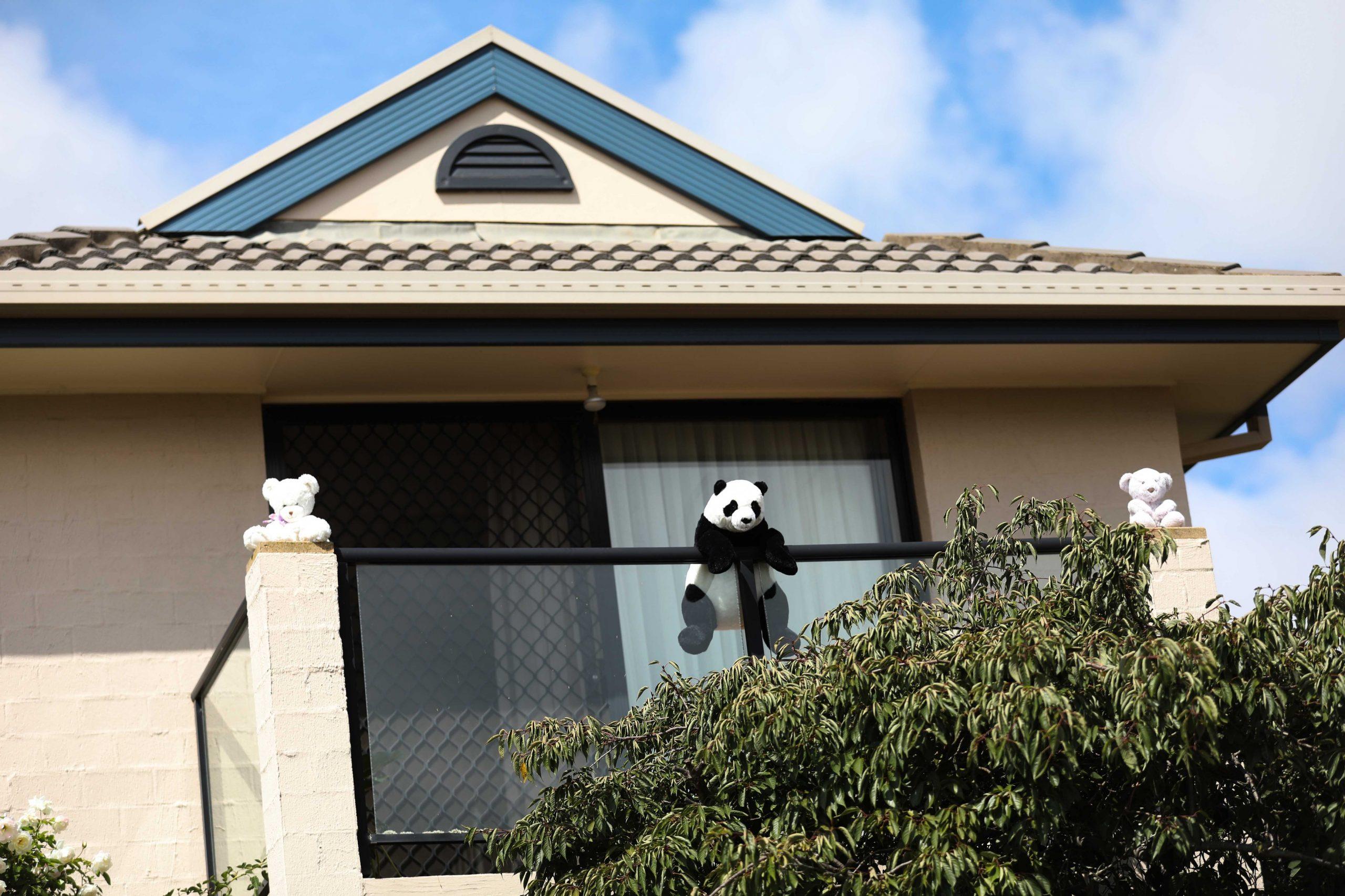 Medvedići na prozorima