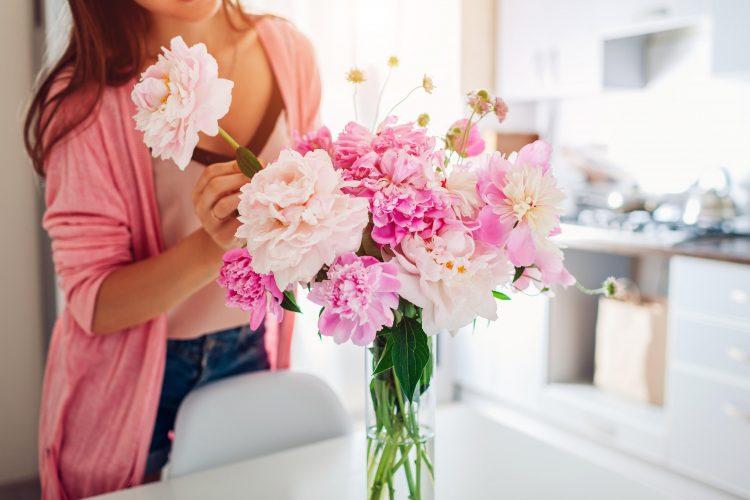 božur cveće