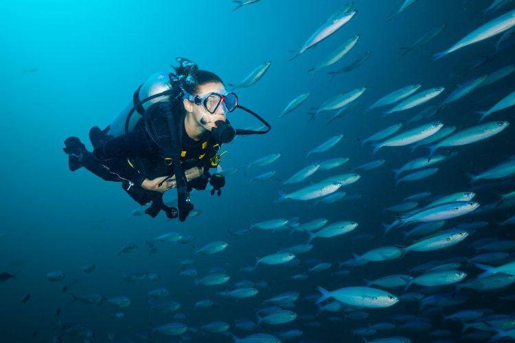 Žena ronilac - roniteljka