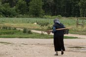 žene sa sela