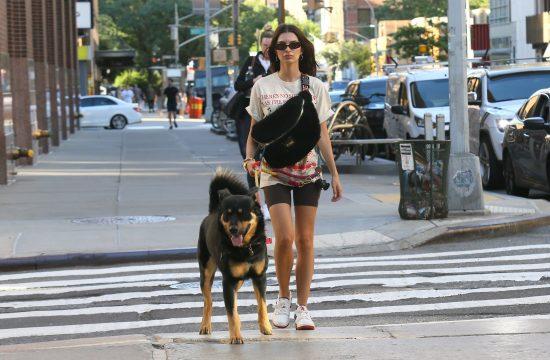 Šetnja sa psom, Emili Rajtakovski